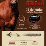 Leilão Genética Parceiros do Senepol 2012 – Feicorte