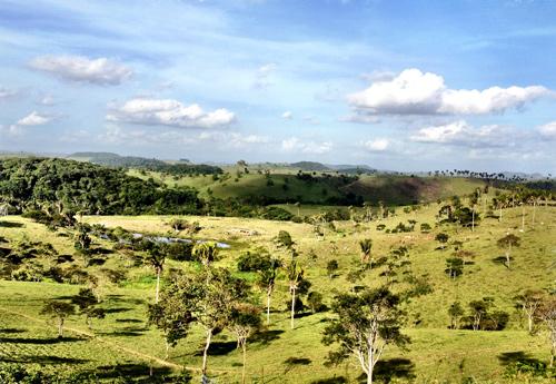 fazenda-mataverde-foto9