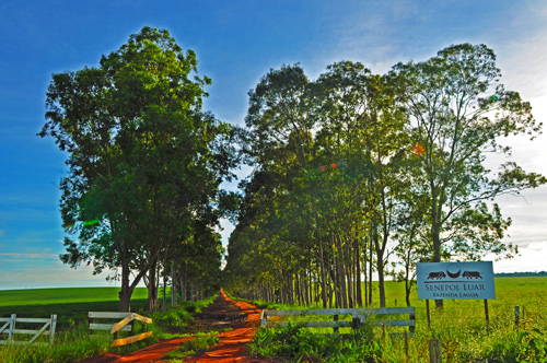 fazenda-senepolluar-foto1