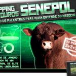 Condomínio Nova Esperança promove Shopping de Touros Senepol