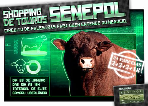 noticia-senepol-260113-500