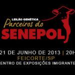 Leilão Genética Parceiros do Senepol: O evento mais esperado do ano!