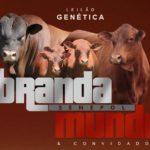 Brandamundo Senepol estreia seu leilão com assessoria da S+