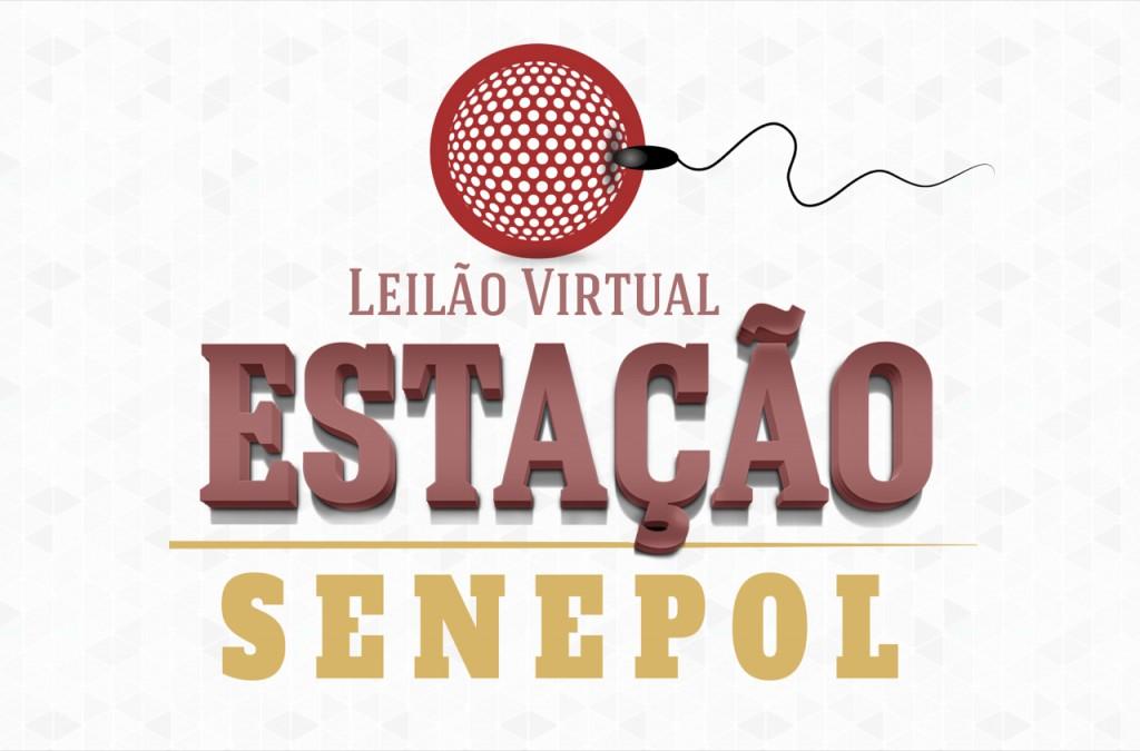 Leilão Virtual Estação Senepol