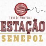 S+ na assessoria: Estação Senepol tem dois leilões  com fêmeas de alto valor genético