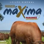 Paranoá Senepol vende 300 produtos  no Leilão Produção Máxima, dia 5 de março