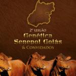 2 o Leilão Genética Senepol Goiás  leva 36 doadoras a Goiânia dia 11 de Maio