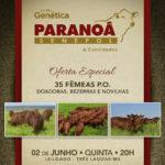 Paranoá Senepol prepara noite memorável com seu Leilão Genética Paranoá Senepol & Convidados no dia 2 de junho
