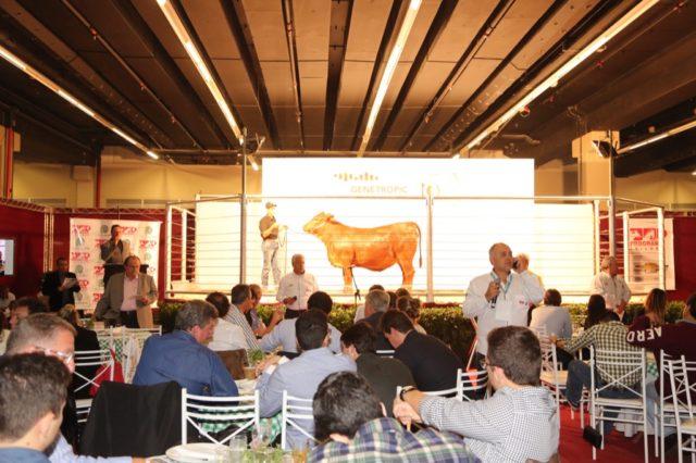 Público lotou o tatersal montado no centro Pro Magno, em São Paulo, para o Esplendor.