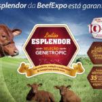 Genetropic fecha a BeefExpo dia 16 com  bezerras especiais no seu Leilão Esplendor