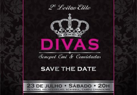 Save-the-date-LEILAO-DIVAS2016