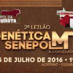 Leilão Genética Senepol MT cresce em volume e qualidade