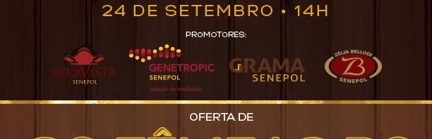ventresdeouro2016-1