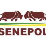 ABCB Senepol fará coletiva de imprensa para apresentar balanço da raça e nova diretoria