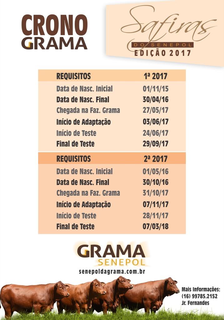 Cronograma Safiras do Senepol Edição 2017