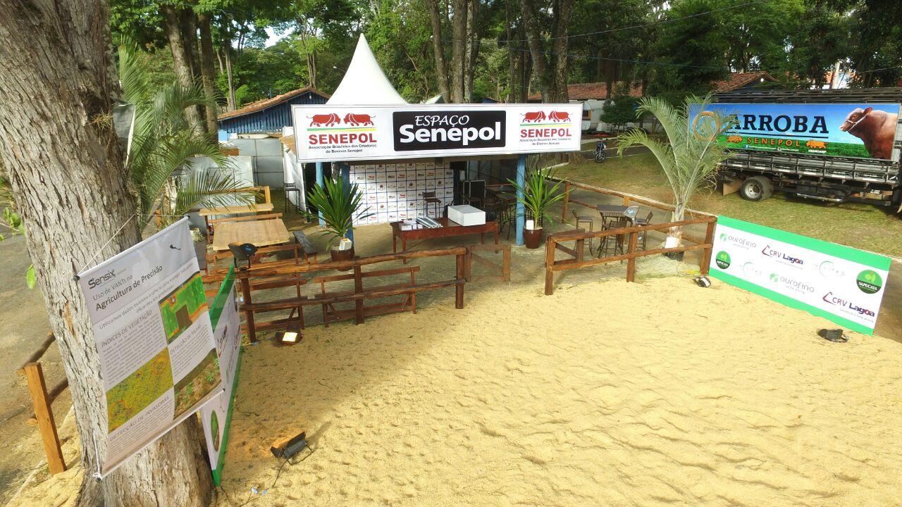 Espaço Senepol funcionará de dia e de noite na Expoagro Franca/SP, de 12 a 19 de maio. (Fotos: Divulgação Arroba Senepol)