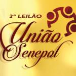 Leilão União Senepol tem 40 doadoras com assessoria da S+ no Camaru'2017