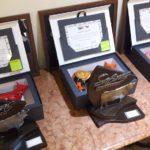 Programa Safiras do Senepol mostra inovações e anuncia novas doadoras qualificadas da raça