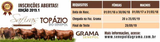 Inscrição Safiras e Topázio 2019.1