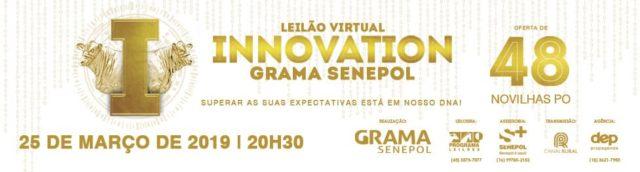 Leilão Virtual Innovation Grama Senepol 2019