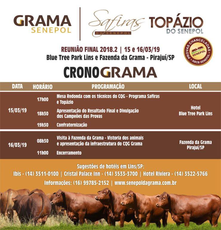 CRONOGRAMA_SAFIRAS-TOPAZIO-2018.2