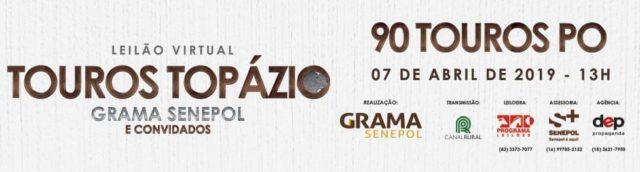Leilão Virtual Touros Topázio Grama Senepol & Convidados 2019