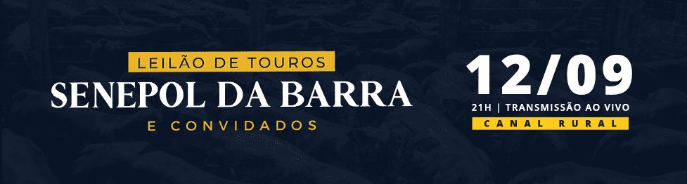 Leilão de Touros Senepol da Barra e Convidados