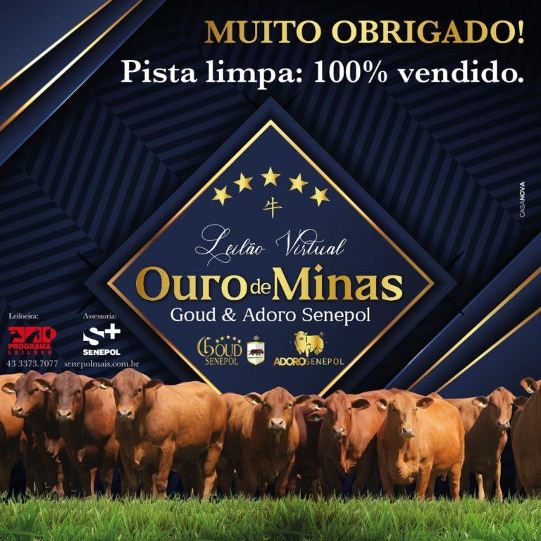 OuroDeMinas-PistaLimpa