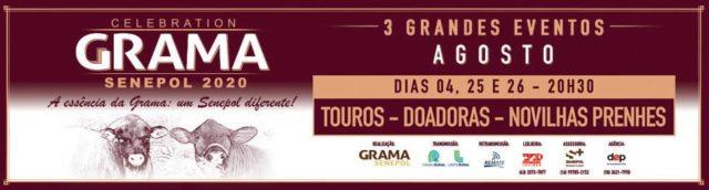 Celebration Grama Senepol 2020