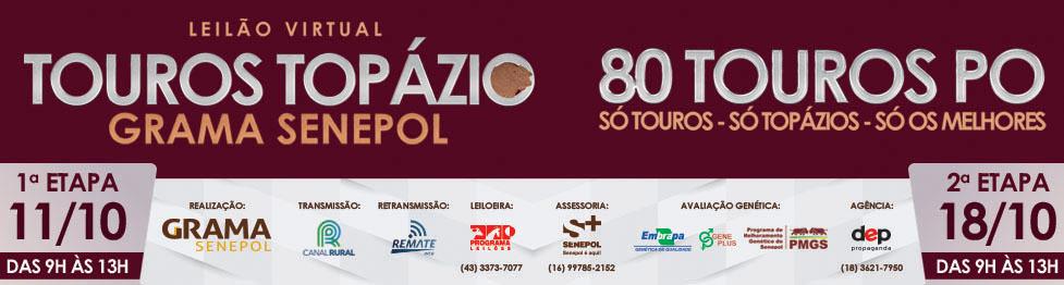 Leilão Virtual Touros Topázio Grama Senepol 2020 2 ETAPAS